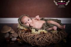 01_Engelsgleich-Babyfotos-Babybilder-Kleinkinder-Fotografie-Buchholz-Harburg-Tostedt-1