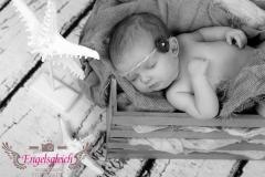 13_engelsgleich-babybilder-babyfotos-babyfotografie-harburg-buchholz-tostedt-2