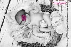 18_engelsgleich-babybilder-babyfotos-babyfotografie-harburg-buchholz-tostedt-7