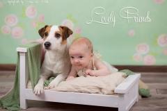 Engelsgleich_babybilder_babyfotos_babyfotografie_hund_buchholz_Tostedt_Hamburg