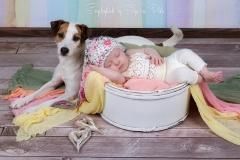 Engelsgleich_hamburg_babyfotografin_babybilder_babyfotos_baby_Tostedt_buchholz