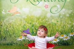 engelsgleich_Babybilder_Buchholz_Tostedt_Hamburg_Buxtehude_Babyfotos_Babyfotografie_Kinderbilder_Kinderfotos_Kinderfotografie_Kleinkind