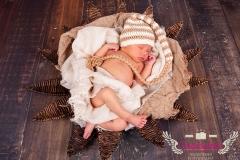 29_engelsgleich-neugeborenenfotografie-neugeborenenbilder-buchholz-newborn-babyfotografie-2