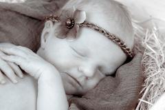 49_engelsgleich-neugeborenenfotografie-neugeborenenbilder-buchholz-newborn-babyfotografie