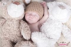 61_Teddybaer_Neugeborenenfotografie_engelsgleich_Buchholz