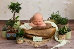 Engelsgleich_Neugeborenenfotografie_Neugeborenenfotos_Babyfotos_Babybilder_Hamburg_boy_Glück_Babyfotostudio Hamburg