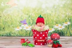 Neugeborenenbilder_Neugeborene_Babyfotos_Neugeborenenfotografie_Buchholz_Hamburg_Harburg_Stade