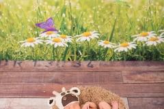 Neugeborenenfotografie_kuh_Babybilder_Babyfotos_Hamburg_Harburg_Buchholz