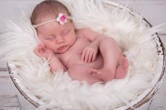 buchholz_neugeborenenfotografie_babyfotograf_Tostedt_Hamburg_babybilder_engelsgleich