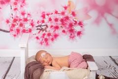neugeborenenfotografie_newborn_neugeborenenfotos_babybilder_babyfotos_neugeborenes_buchholz_Hamburg_Tostedt_Buxtehude